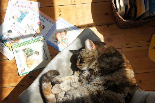 Katie & Olly books