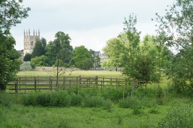 From Christ Church Meadow