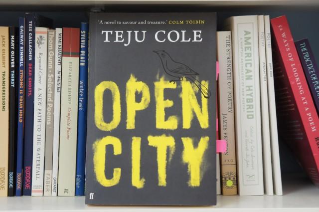 Open City, Teju Cole
